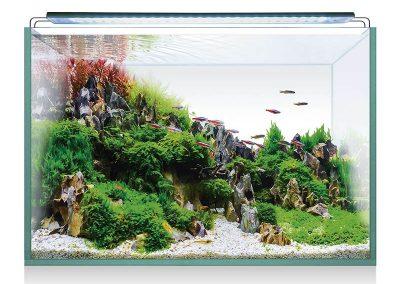 Taller Bibliolab: Aprèn a programar el teu aquari virtual, a càrrec de ClauTic